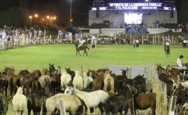 La Fiesta de las Destrezas Criollas y el Folklore de San Juan ya es Fiesta Nacional