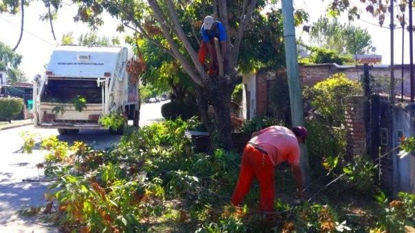 Operativos de limpieza en Troncos del Talar