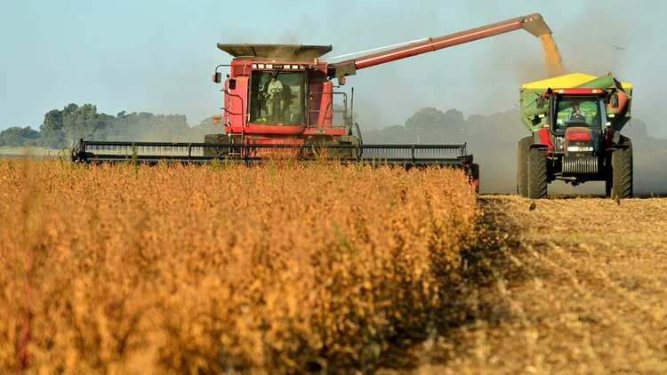 proyectan una caída del PBI agroindustrial mucho menor que la actividad económica