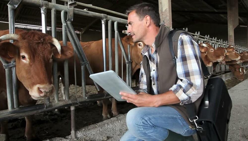 """El cierre de las exportaciones de carnes """"detonó"""" la confianza de los productores"""