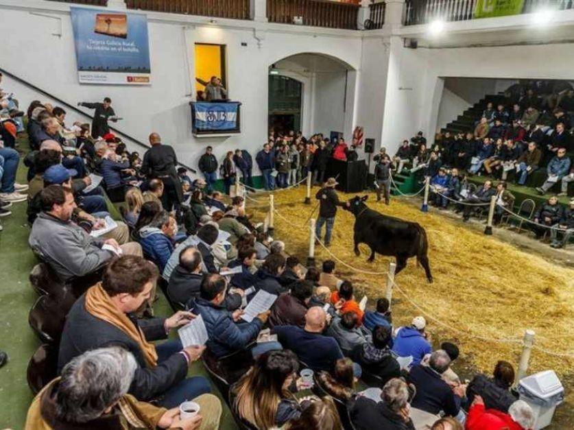 Volverán los remates de la Sociedad Rural Argentina en el predio de La Rural; en este caso, con un aporte solidario a la educación