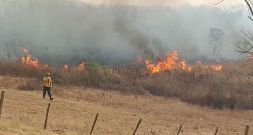 Incendios en las islas del Paraná. Demandan por $150 millones a productores y crece una polémica con Cabandié