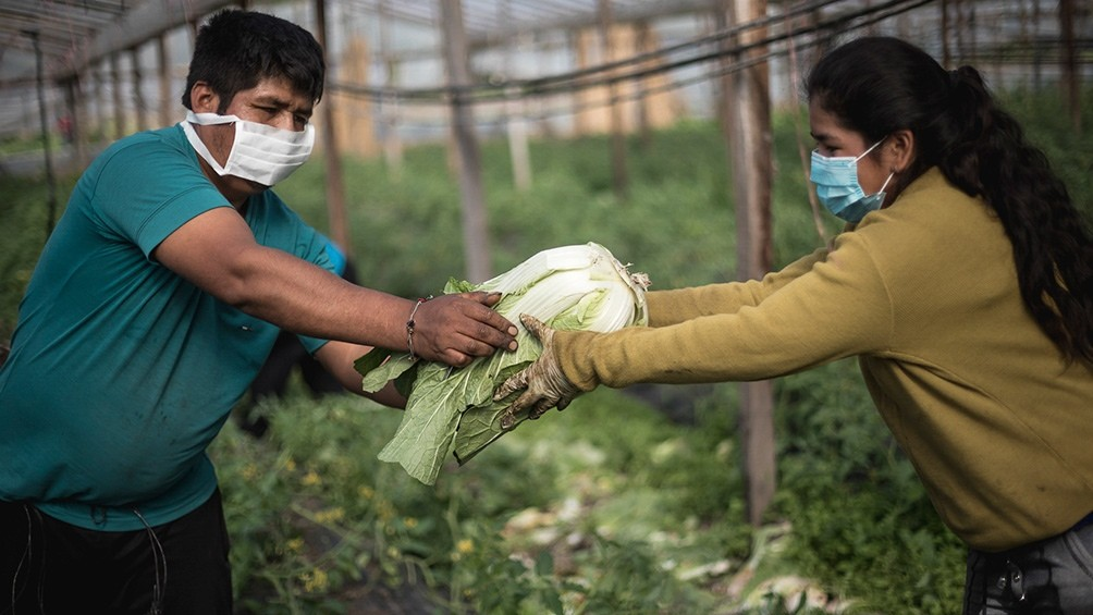 """Día del Agricultor y la Agricultora: """"Necesitamos acceder a la tierra"""""""