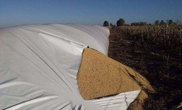 Inseguridad rural: otra vez rompieron silobolsas en Córdoba