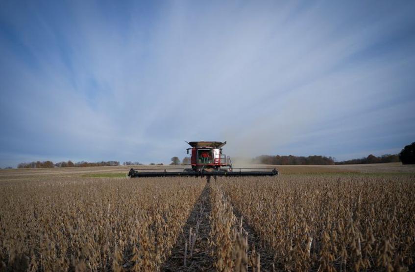 Proyectan 129,8 millones de toneladas para la cosecha 2021/22