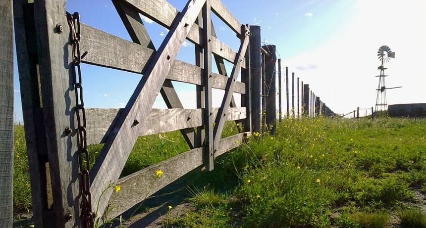 Cayó nuevamente la actividad inmobiliario rural