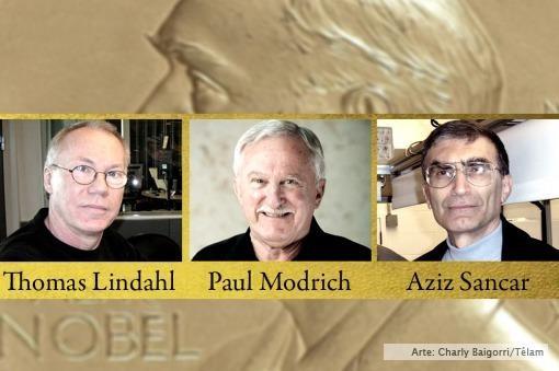 Nobel de Química a tres científicos por sus estudios para la reparación del ADN