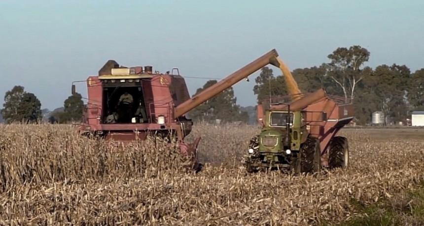 Cuáles son los ejes del proyecto de Desarrollo Agroindustrial