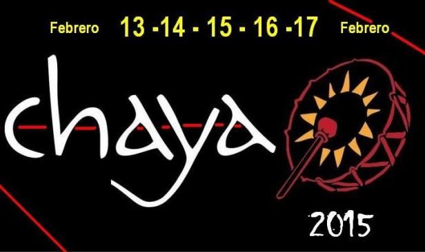 Mirá qué artistas nacionales ya forman parte de la Chaya 2015