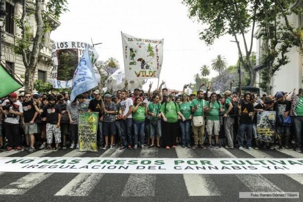 Marihuana: miles de personas marcharon a favor de la despenalización