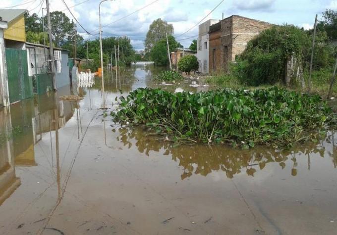 Volvió a crecer el Uruguay en Concordia, tras una jornada de fuertes fluctuaciones